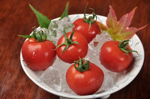 tomato487.jpg